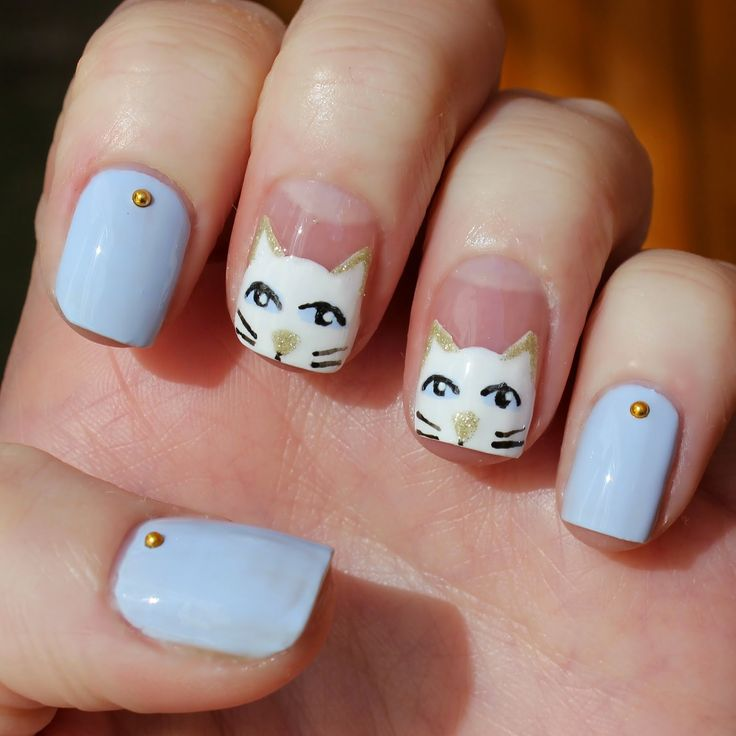 gato blanco en uñas azules