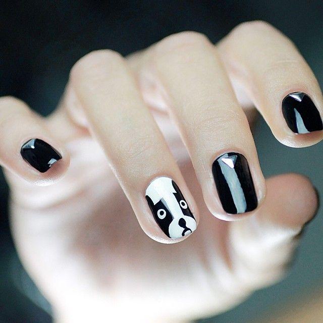 hermosas uñas negras de perro
